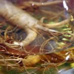 Helpt ginseng bij extreme oververmoeidheid?